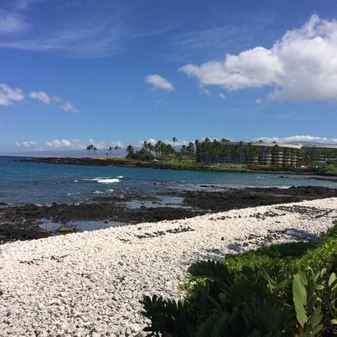 Day 4 hawaii 014