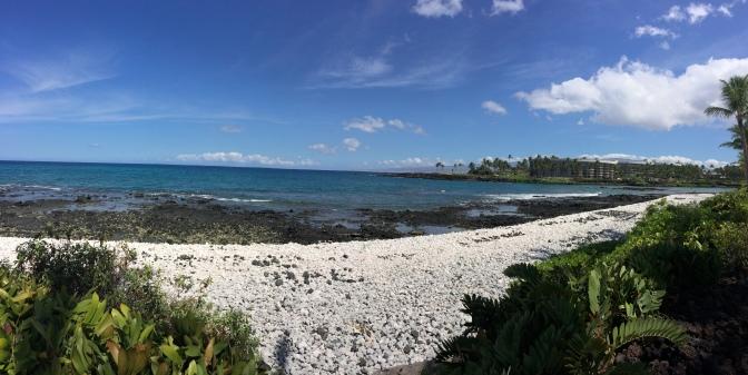Day 4 hawaii 015