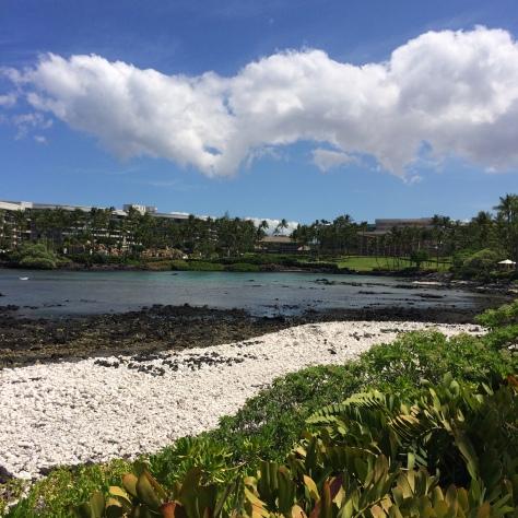 Day 4 hawaii 019