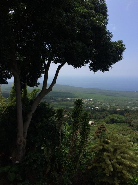 day 6 hawaii 034